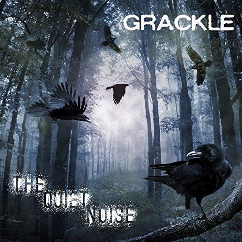 Mark's Quick Review: Grackle's – The Quiet Noise